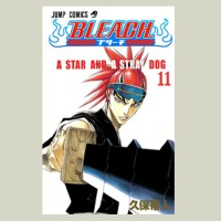 Bleach - volume 11 - A Star And A Stray Dog