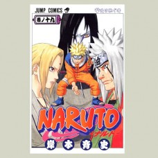 Naruto - volume 19 - The Successor